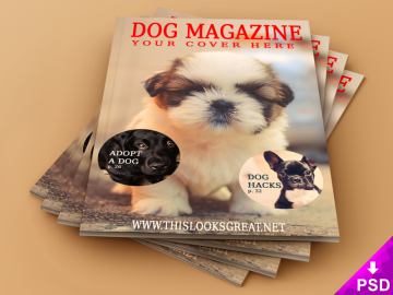 Magazine Cover and Interior Mock-Up 800 x 600 corner